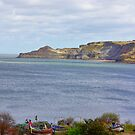 Runswick Bay by Trevor Kersley
