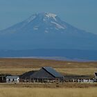 Mt.  Adams by DavesPhoto