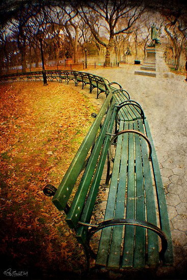 Central Park Benches by Sonia de Macedo-Stewart