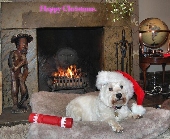 Happy Christmas. by albutross