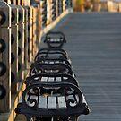 Cape Fear River Walk by David Edwards