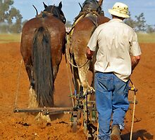HAND FURROW PLOW. by Helen Akerstrom Photography