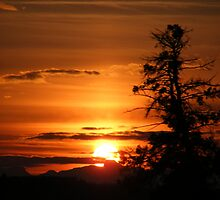 Highway sunset by Barrie Daniels