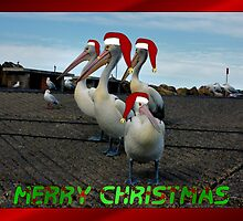 PELICAN FAMILY CHRISTMAS CARD by Cheryl Hall
