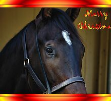 HORSE FACE - MERRY CHRISTMAS - COLOR by Cheryl Hall