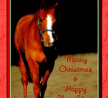 BEAUTIFUL HORSE CHRISTMAS CARD - MERRY CHRISTMAS & HAPPY NEW YEAR by Cheryl Hall