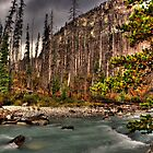 Marble Canyon by Alyce Taylor