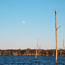 Deadwood Moon of Purtis Creek by MBallard