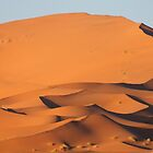 Dunes of Erg Chebbi, Morocco by helenlloyd