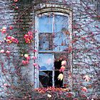 broken window, fall colors by Jennifer Hulbert-Hortman