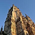 York minster  by beanocartoonist
