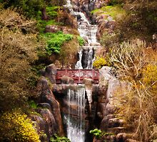 Golden Gate Park Waterfall by Victor He