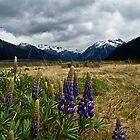 Arthur's Pass, New Zealand by Anthony and Kelly Rae