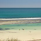 Yanchep Lagoon, WA by Elaine Teague