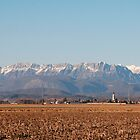 Winter Rural Panarama  by jojobob