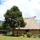 Untouched Fijian Villiage by jpbradshaw