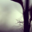 New Growth by Xander Ashwell