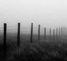 Fence Posts, Mount Aran by Xander Ashwell