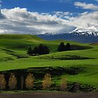 New Zealand Pastoral by Russ Underwood