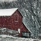 Barn Bluster by  Bob Hall