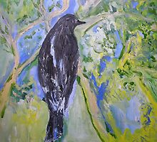 Harry's Currawong by Julie-Ann Vellios