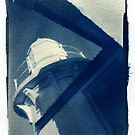 Cyanotype - Toned with tea by David Amos