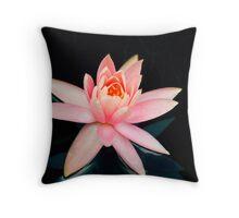 Pink Water Lily  - Sydney Royal Botanic Gardens, NSW Throw Pillow