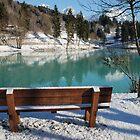 Bench at Barcis  by jojobob