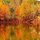 Autumn Pond by JGetsinger