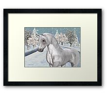 Winter Snow .. the tale of a wild horse Framed Print