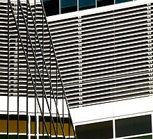 Sydney Building Reflection 30 by luvdusty