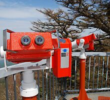 Two Viewing Binoculars at Fuji  by jojobob