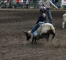 Cochrane Lions Rodeo #5, 2009, Canada. by Felicity McLeod