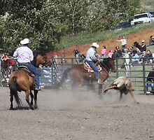 Cochrane Lions Rodeo #24, 2009, Canada. by Felicity McLeod
