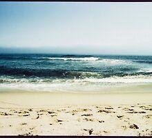 nauset light beach  by Rachael DuMoulin