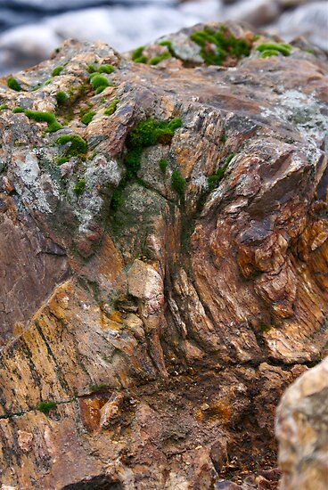 Texture in Rock by Themossgirl