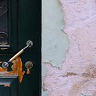 Door by fonsecanuno
