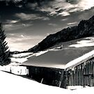 Winter, Austria by Sabine Zehetner