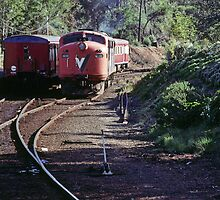 19980602 Engine going round V Line at Stoney point by Fred Mitchell