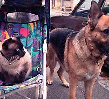 Basil and Bella by Juilee  Pryor