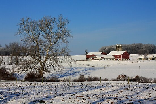 Winter in Lancaster County by Lori Deiter