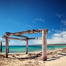 Hamelin Bay, Western Australia by Levi Buzolic