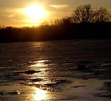 Sunset on Ice by Veronica Schultz