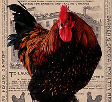 Barker's Special Poultry Remedy by angelandspot
