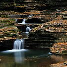 New York's Watkins Glen XI by PJS15204