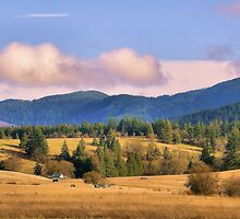 Coburg Hills by jeanniechris