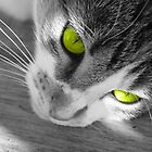 kiara a little green. by CarrieCollins
