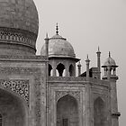 Iconic Beauty - Taj Mahal by Lidia D'Opera