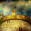 Windsor Castle by David's Photoshop