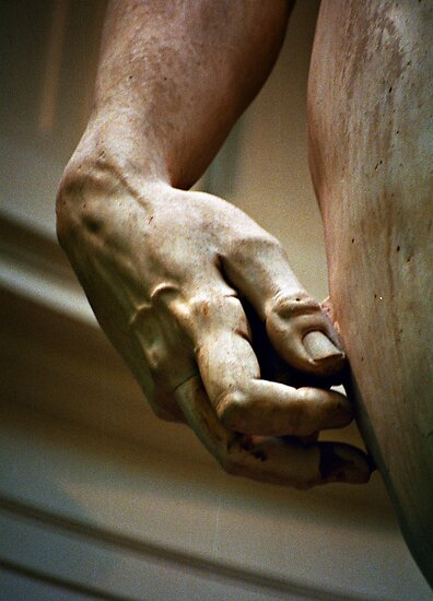 Michaelangelo's David in detail - Firenze by Lidia D'Opera